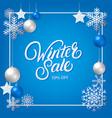 winter sale hand written lettering vector image vector image