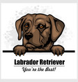 brown labrador - peeking dog head dog vector image vector image