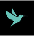 flying hummingbirds on black background logo vector image