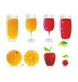 fruit drinks vector image