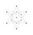 Metatrons Cube sacred geometry vector image