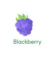 cartoon blackberry icon fruit isolated on white vector image vector image