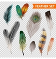 Feathers Realistic Set vector image