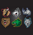 animal professional logo set for a sport team vector image vector image
