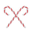 christmas candycanes crossed and isolated on white vector image vector image