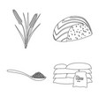 isolated object of diet and cooking logo vector image