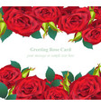 red roses flower invitation card delicate vector image vector image