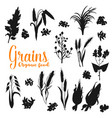 seeds and grains isolated silhouettes vector image