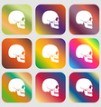 Skull sign icon Nine buttons with bright vector image vector image