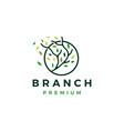 tree branch circle leaf tree logo icon vector image vector image