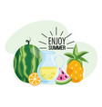 watermelon with lemonade and tropical pineapple vector image