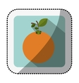 color square with middle shadow sticker with vector image