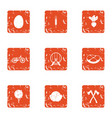 concoction icons set grunge style vector image