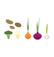 flat set of fresh farm vegetables potato vector image