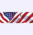 national flag usa vector image vector image