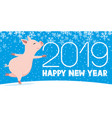 pig symbol of the new year vector image vector image