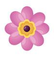 pink flower decoration vector image vector image