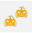 realistic design element pumpkin vector image