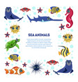sea animals banner template with place for text vector image vector image
