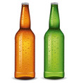 beer bottles with many fresh water drops vector image vector image