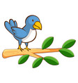 blue bird on white background vector image vector image