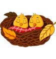 cartoon baby bird sleeping in the nest vector image