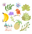 cartoon set of savanna and tropical flowers vector image vector image