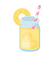 cold refreshment juice with sliced fruits and vector image vector image
