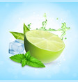fresh lime with mint vector image vector image