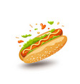 hot dog poster design isolated on white vector image