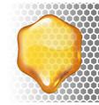 realistic honey drop hexagon on vector image vector image