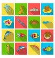 sea animals set icons in flat style big vector image vector image