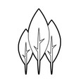 tree plant forest icon vector image vector image
