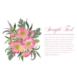 bouquet of summer flowers vector image vector image
