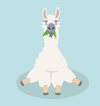 cute alpaca sitting happy vertor vector image vector image