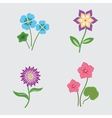 Flower set on light gray background Colored vector image vector image