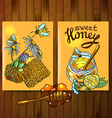 honey flayers vector image