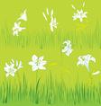 lilies garden vector image vector image