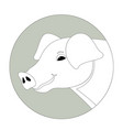 pig head lining draw front vector image vector image