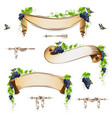 set of vintage ribbons with grapes vector image vector image