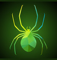 spider of triangles vector image vector image