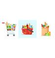 supermarket shopping cart and basket vector image