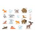 set of arctic and antarctic animals fox wolf vector image