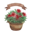 Red Flower in a flowerpot beige ribbon set on vector image