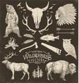 Vintage Wilderness Set vector image