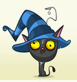 cat in witch hat cartoon vector image vector image