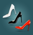 Luxury footwear Women classic red black white vector image