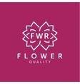 Simple and graceful floral monogram design vector image