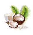 coconut realistic vector image vector image