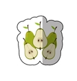 Fresh pears fruits vector image